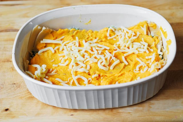 Sprinkle mozzarella cheese over butternut squash puree you just spread over lasagna noodles