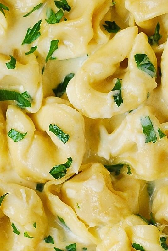 tortellini recipes, tortellini sauce recipe, creamy pasta recipes, pasta dinners, pasta recipes