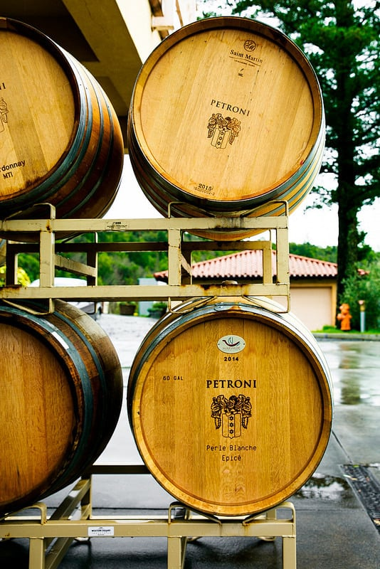 Sonoma Wine Tasting at Petroni Vineyards