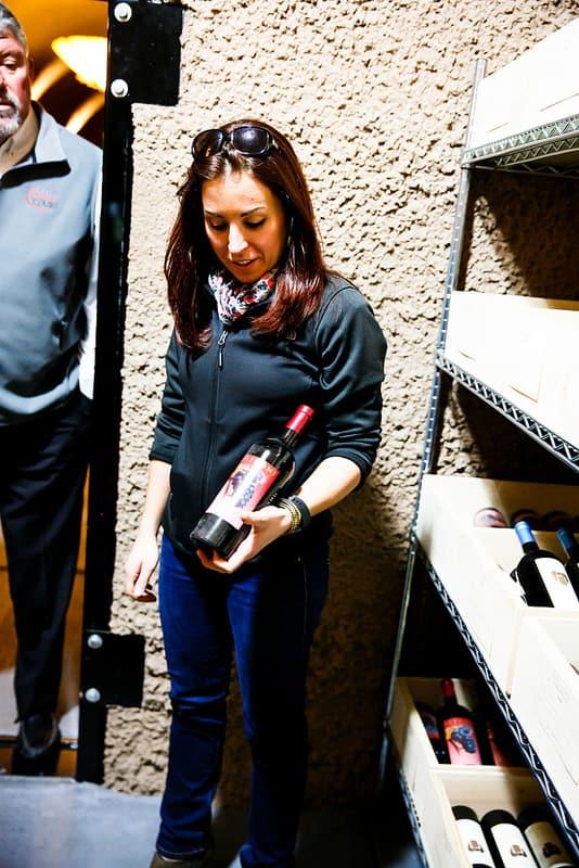 Sonoma Wine Tasting Tour, California wine country, Sonoma valley