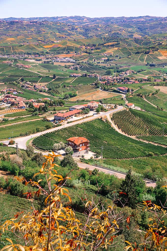 View from La Morra, Piedmont, Italy