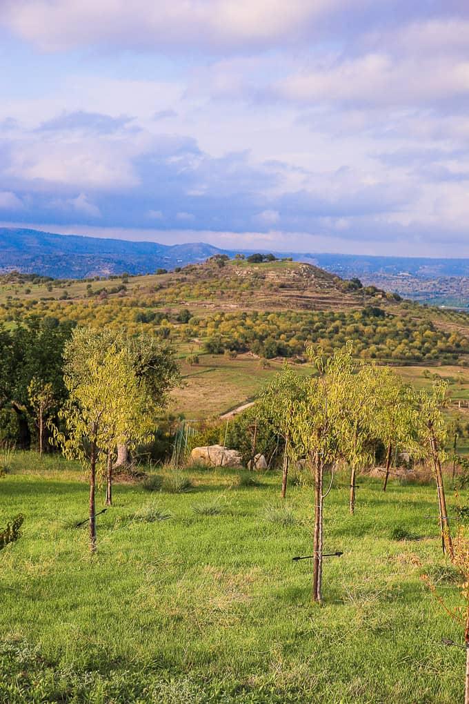 Sicily, Italy - view from Masseria della Volpe in Sicily, Italy
