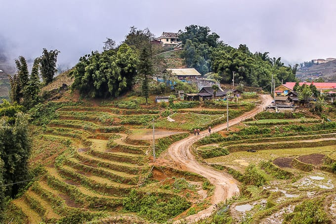 rice terraces near Cat Cat village, Vietnam