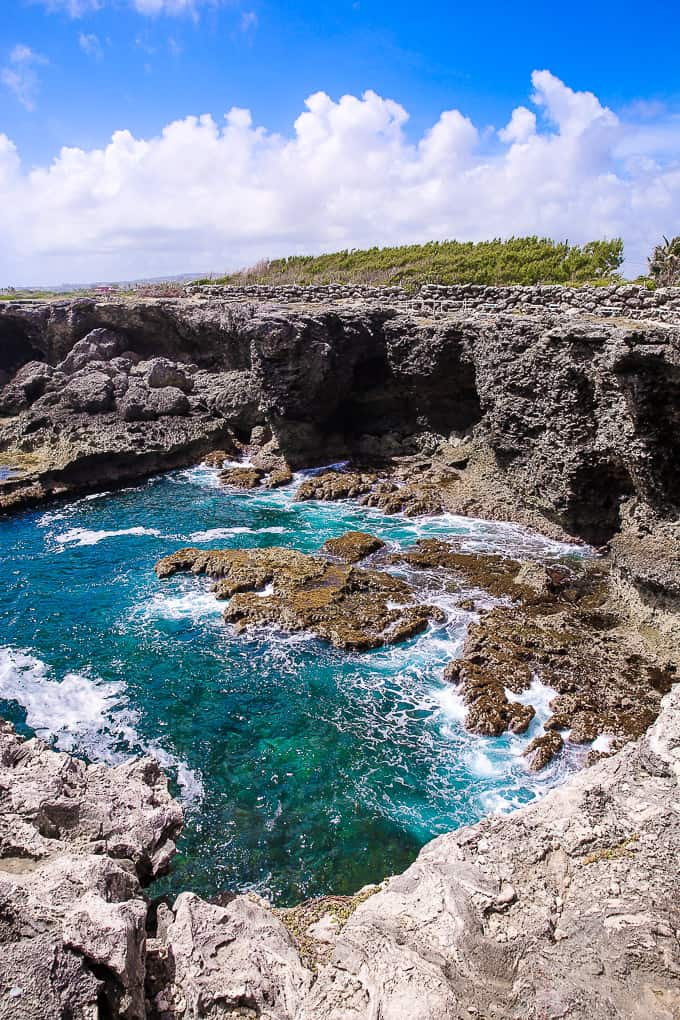 Animal Flower Cave, North Point, Barbados