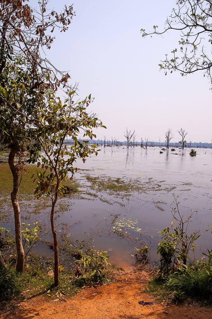 Near Jayatataka Baray, Cambodia