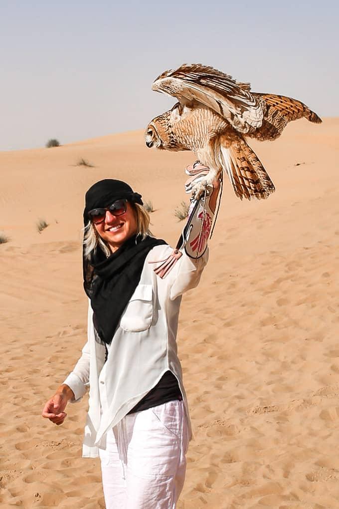 Flying desert eagle owl at the Dubai Desert Conservation Reserve