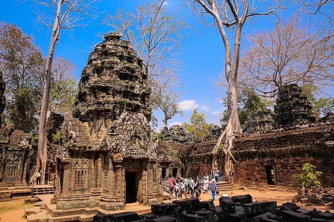 Ta Prohm - the Jungle Temple, Cambodia