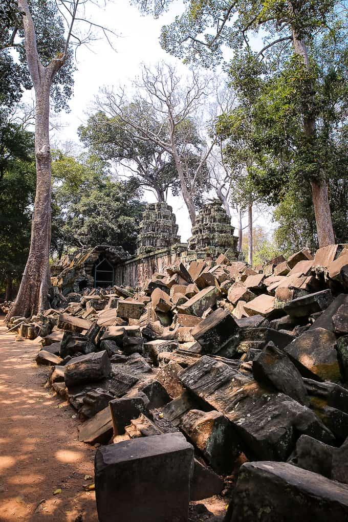 Temple ruins at Ta Prohm, jungle temple, Cambodia