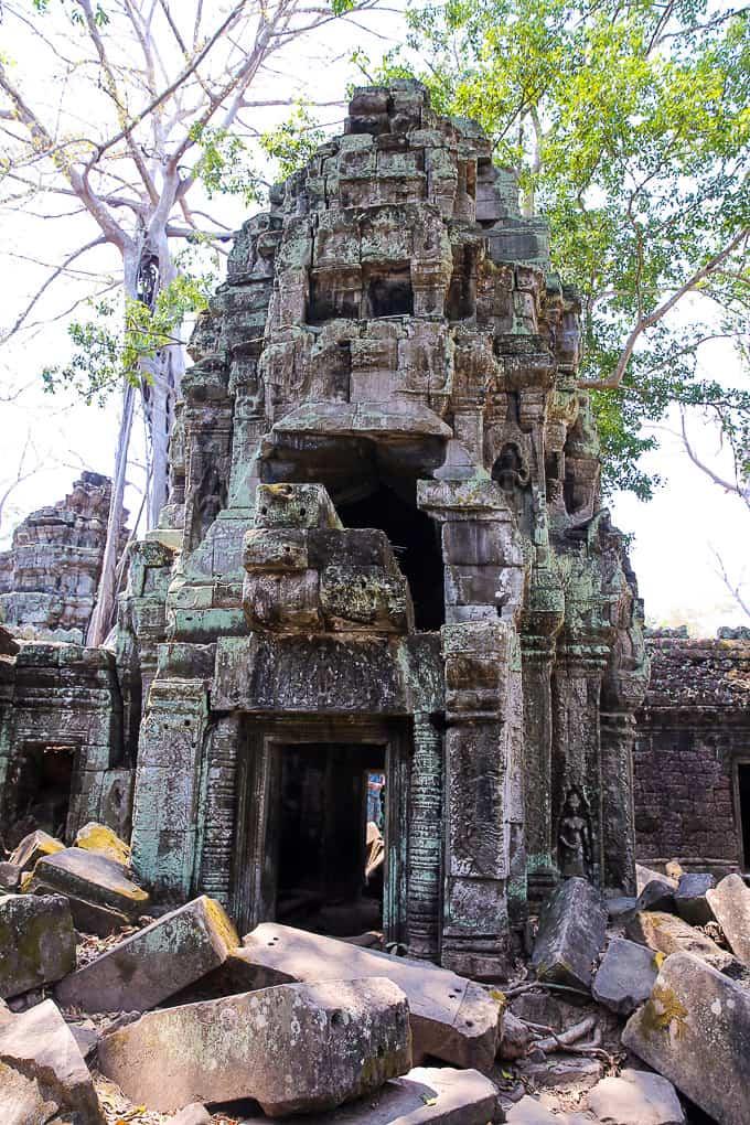 Ta Prohm - Jungle Temple, Cambodia
