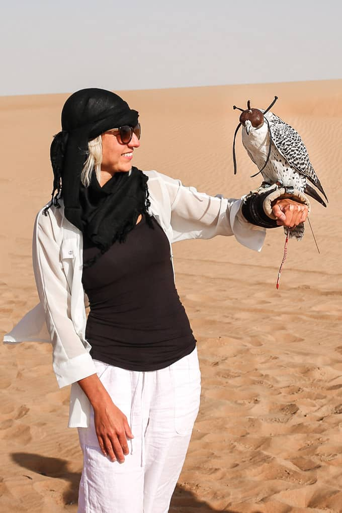 Learning about falconry at the Dubai Desert Conservation Reserve